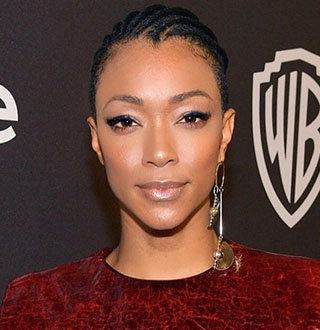 Who Is Sonequa Martin-Green Husband? Married & Net Worth Info